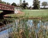 Cart and Foot Bridge