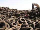 Waste Tire Program