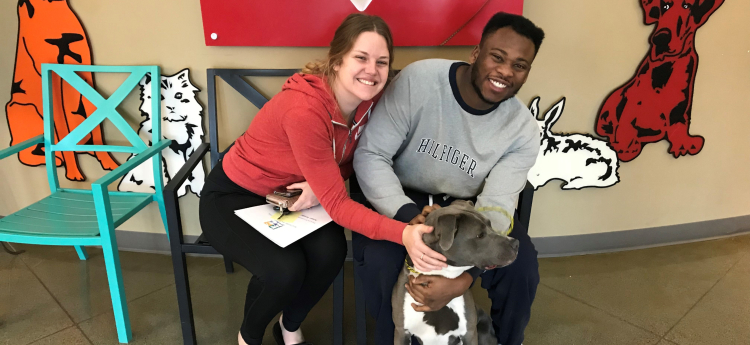 Couple with their new rescue dog.