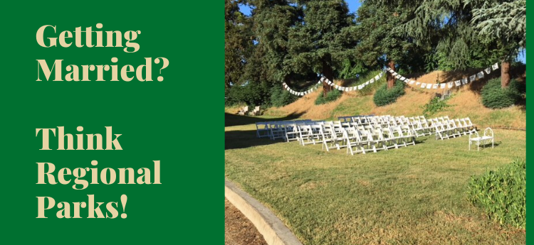 Getting Married? Think Regional Parks - Wedding Ceremony at Jean Harvie Community Center